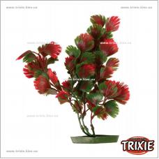 Аквариумное растение Trixie (Размер: 25см)